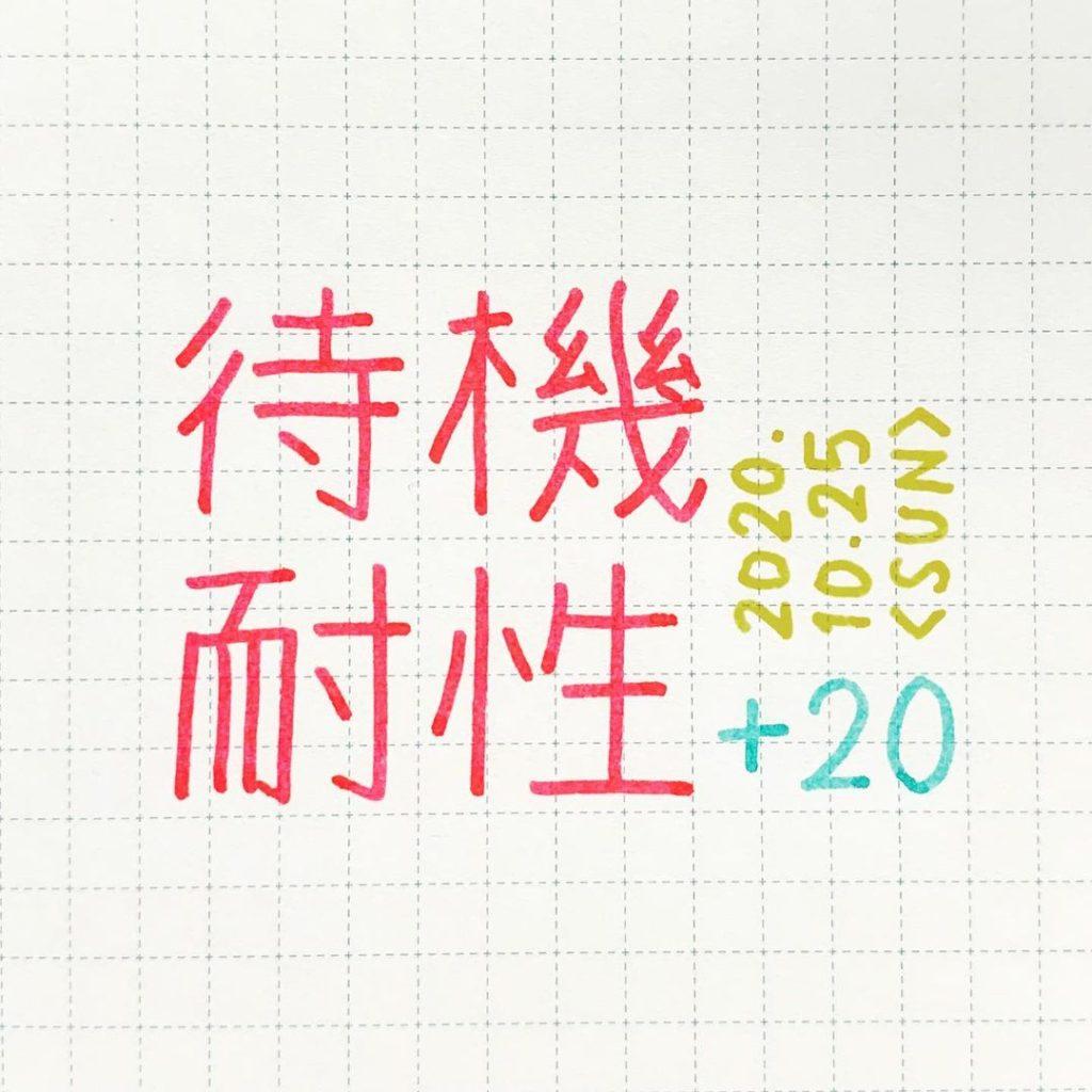 待機耐性+20